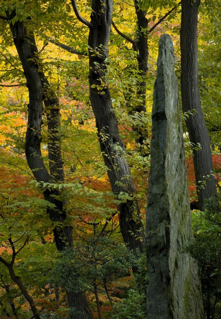安田庭園林
