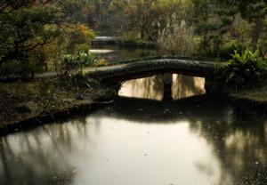 百花園池のほとり03